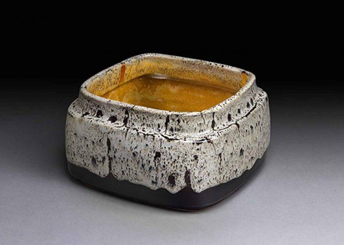 grande coupe ceramique modelee savane
